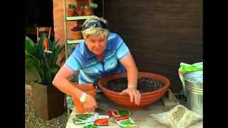 The Gardener Magazine:  Multi Herb Planter