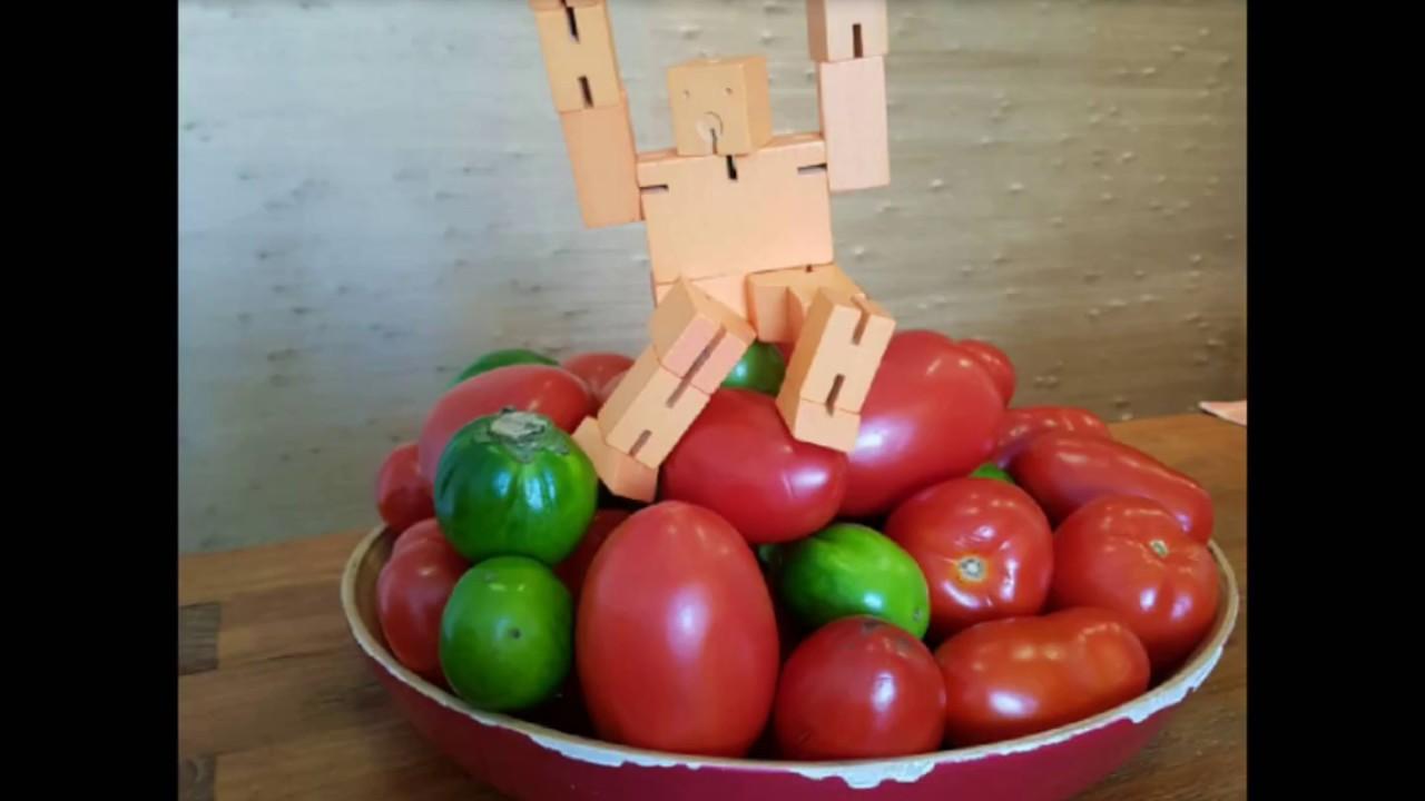 O Robô e os Legumes Dançantes