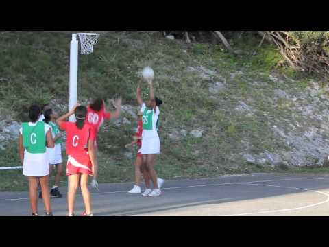 Netball Bermuda January 21 2012