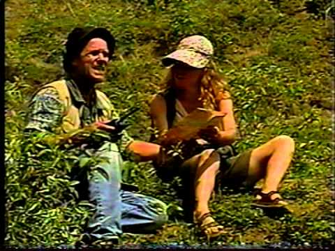 Old TV CLIPS Colombia / Joseph Fuzessy
