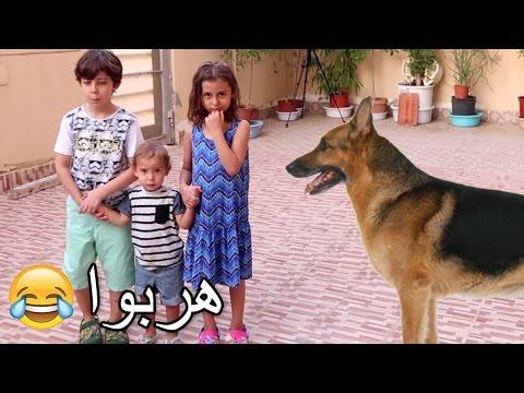 فيديو مقلب الكلب على أطفالي!