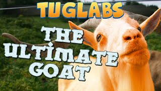 TUG - The Ultimate Goat
