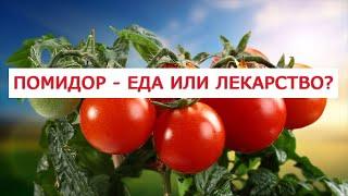 20 народных  рецептов лечения помидорами 4 способа лечение варикоза томатами 3 самых эффективных