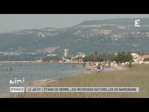 SUIVEZ LE GUIDE : Le Jaï et l'étang de Berre, les richesses naturelles de Marignane