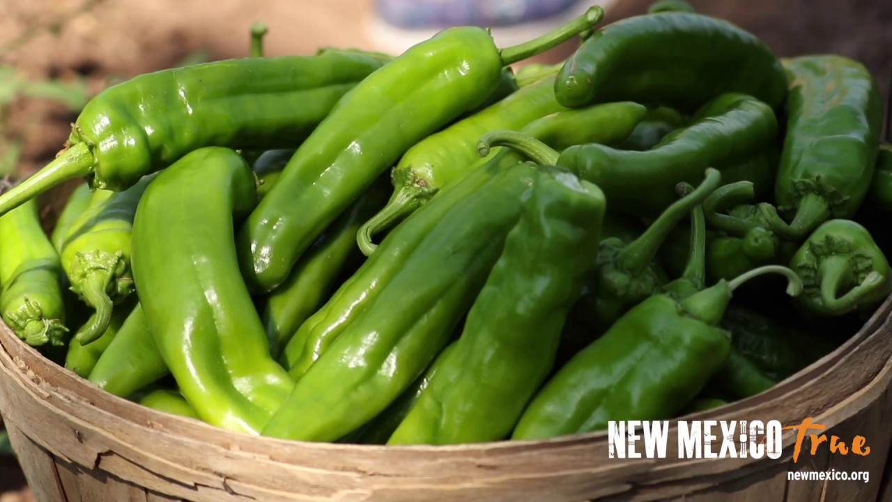 Pick Chile - A New Mexico True Experience