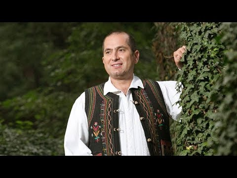 Liviu Dica - Le las mandrelor in scris