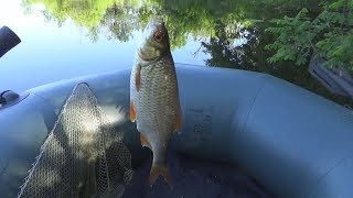 Летняя рыбалка на поплавочную удочку,  Ловля на Широком