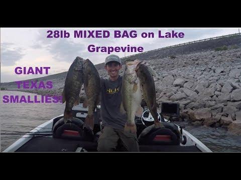 GIANT Mixed Bag On Lake Grapevine