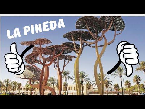 ЗА и ПРОТИВ отдыха в La Pineda (Ла Пинеде).
