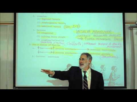 ANATOMY; MYOLOGY; PART 3; DISEASES & DISORDERS IN MUSCLES by Professor Fink