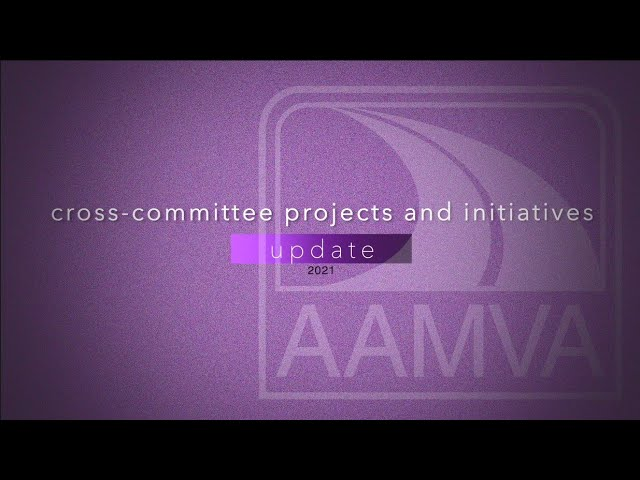 2021 Cross-Committee Projects and Initiatives
