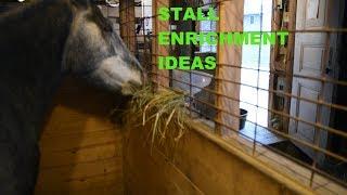 Stall Enrichment Ideas