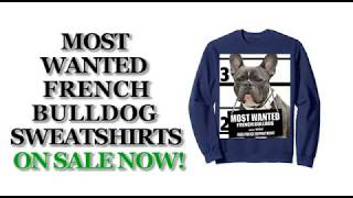 Most Wanted French Bulldog Funny Dog Sweatshirts - Men's, Women's, Kid's - Black, Blue, Dark Heather