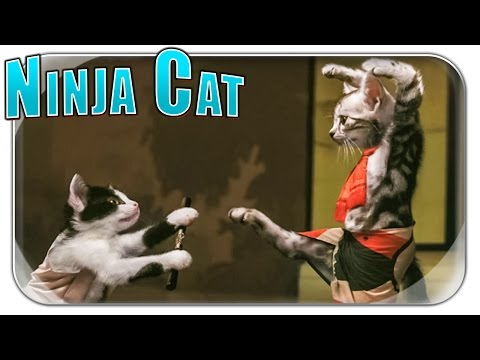 NINJA CAT UND RUSSEN PANNE | Stan Rant –  Lustige Videos | Hey Stan Deutsch German