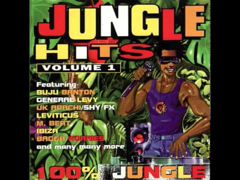 JUNGLE VIBES COMPILATION (2 tracks missing)
