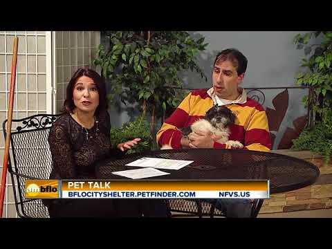 Pet Talk Tuesday Lon Chaney
