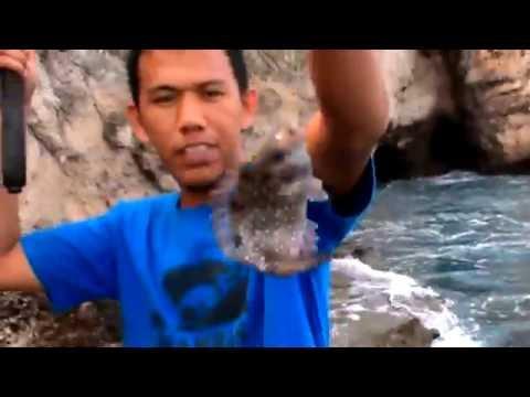 Mancing Ikan di Puncak Tebing Lamreh