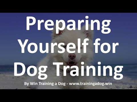 Preparing Yourself For Dog Training