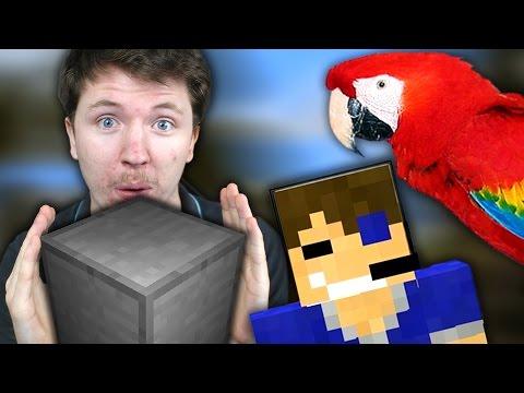KIRA LE JARDINIER  Minecraft building games