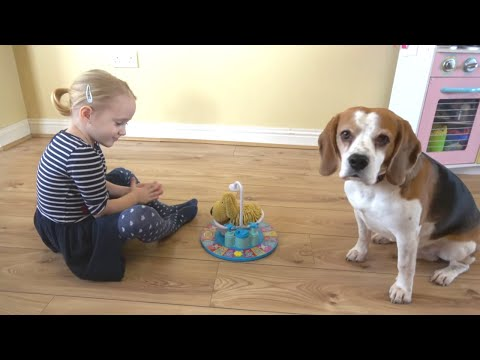 Why you shouldn't Play Soggy Doggy with Dog | Baby Laura and Charlie the Dog