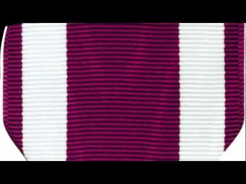 Meritorious Service Medal - MSM