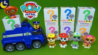 Lots of Paw Patrol Toys Surprise Blind Bags TY Mini Boos Ultimate Rescue Pup Unboxing Toys Video