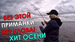СУДАКИ СОШЛИ С УМА ПРИМАНКА УБИЙЦА РАЗРЫВАЕТ Ловля судака на джиг осенью Рыбалка на спиннинг 2021