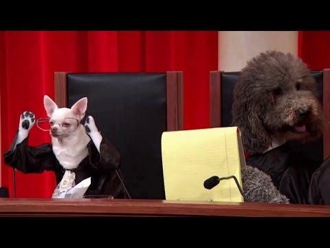 Millbrook v. United States: Oral Argument - February 19, 2013