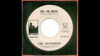 VEJTABLES-FEEL THE MUSIC
