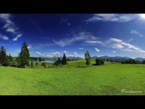 Peaceful & Tranquil Background Music Playlist - Dean Evenson Mix