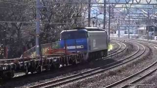 JR貨物 EF200 19号機が牽引するチキ貨物(H31.1.26)