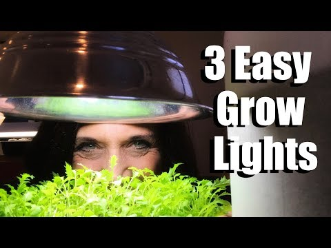 3-easy-grow-light-set-ups-for-starting-vegetable-seeds-indoors-&-lumens-and-kelvin-explained