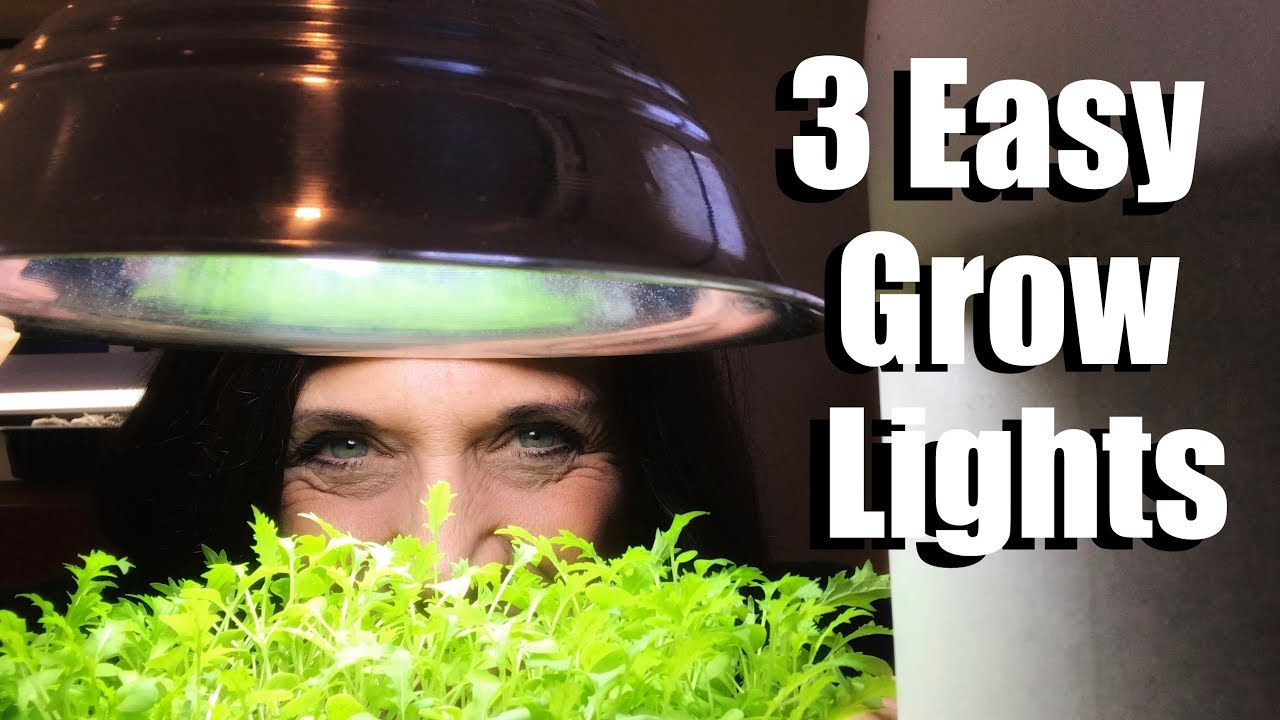 3 Easy Grow Light Set Ups For Starting Vegetable Seeds Indoors