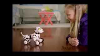 Zoomer   Зумер - собака - робот