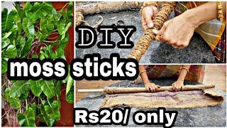 మనీ ప్లాంట్ ఎక్కించటానికి చవకగా moss stick ల తయారీ/DIY CHEAP &BEST moss sticks at home. #money plant
