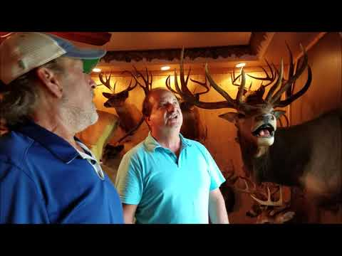 Central New Yorker Has Trophy Room That Would Make Any Hunter Jealous