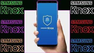 Samsung SEIN VS GLOBAL???.
