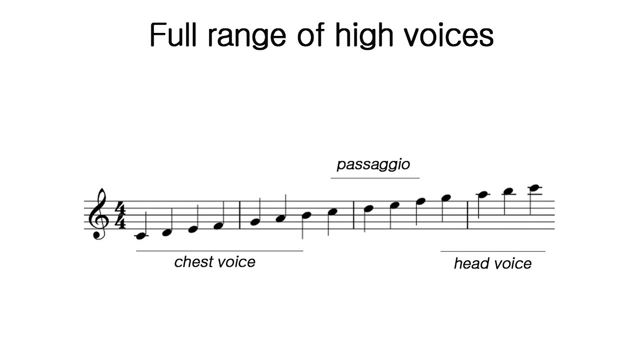 Voice Ranges & Registers – The Voice Guru