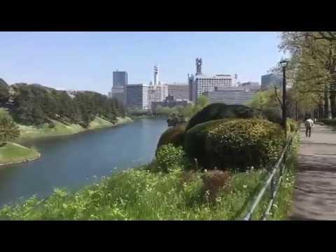 Japan Scenery #4 Imperial Palace Moat 皇居