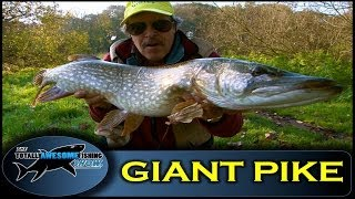 Pike fishing on the river Stour- Series 1- Episode 9