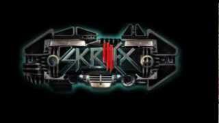 Download SKRILLEX- Boss Boys MP3 song and Music Video