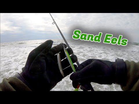 Late Fall Run SAND EEL Bite! - Striped Bass & SURPRISE CATCH! - Long Island NY