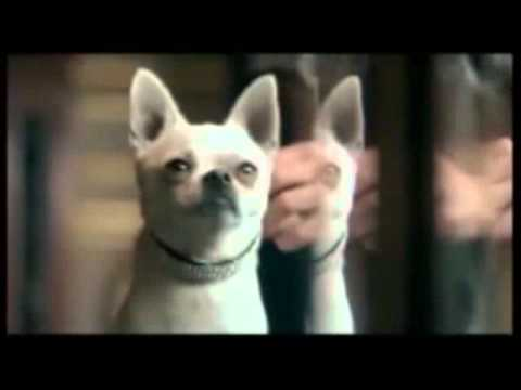 10 Epic Viral Marketing Videos de YouTube · Alta definición · Duración:  3 minutos 43 segundos  · Más de 214.000 vistas · cargado el 22.04.2014 · cargado por TheRichest