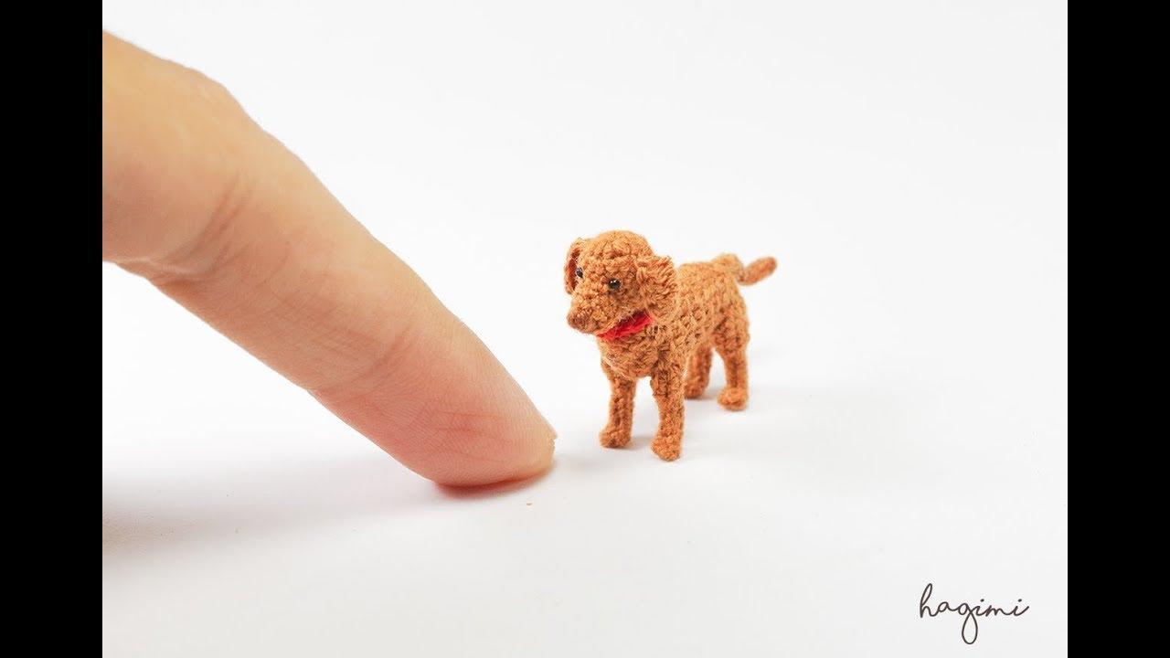 Crochet Cute Amigurumi Dachshund Puppy Dog DIY Video Tutorial ... | 720x1280