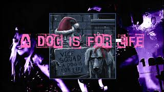 UK Punk Rock : A Dog Is For Life ( Not Just For Christmas ) Vice Squad
