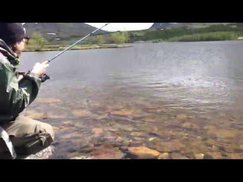 Fiske i Rondane