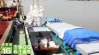 Thủ tướng chỉ đạo: Xuất khẩu gạo phải có kiểm soát | VTC16