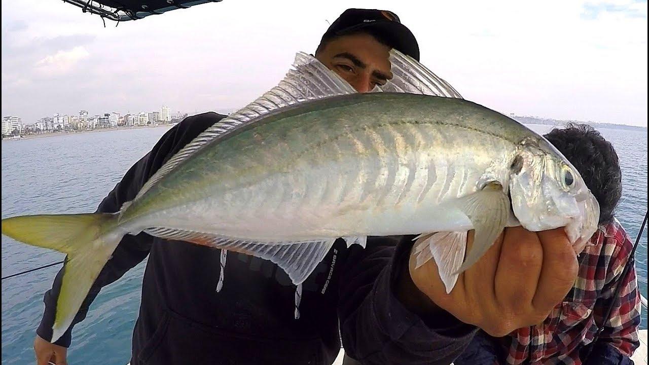 Balık Tutma Yarışması Yaptık / Rekor Boy İstavritler !!