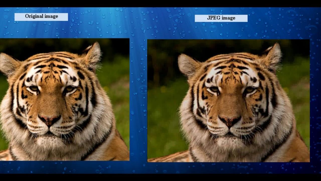MATLAB Compression des images JPEG GUI