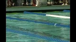박태환 개인혼영 200m 경기